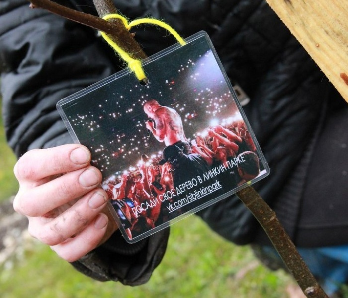 Поклонники Честера Беннингтона успели высадить несколько деревьев на улице Петухова