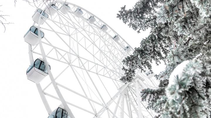В Самаре ищут ЧОП для охраны колеса обозрения в парке Гагарина