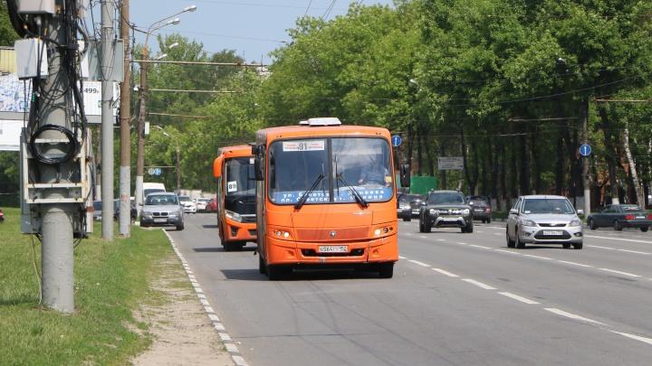 Жители пригородов создали петицию против выделенной полосы для транспорта на проспекте Гагарина