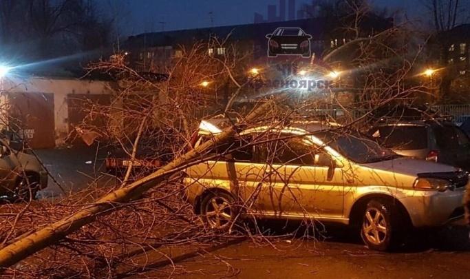 В Красноярск идет сильный ветер, который должен разогнать вредную дымку