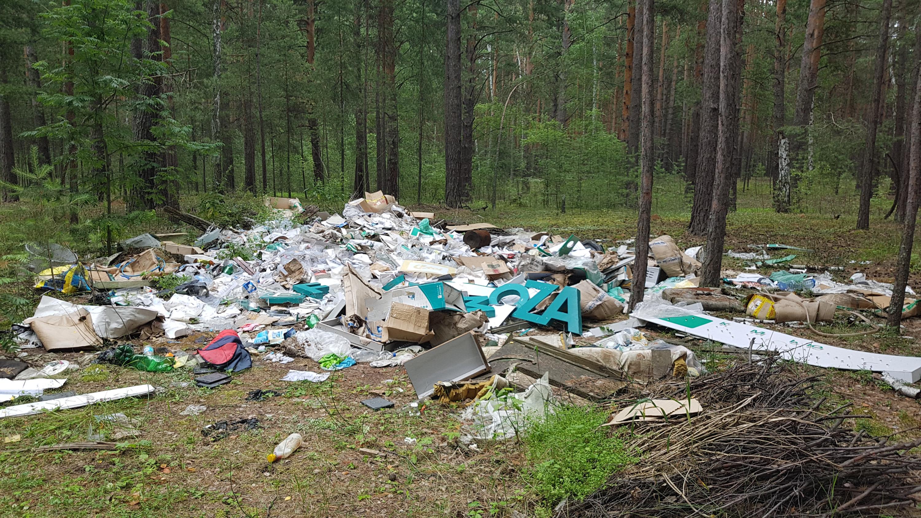 За появившиеся после 1 января 2019 года новые свалки придётся ответить собственникам участков, где обнаружили мусор