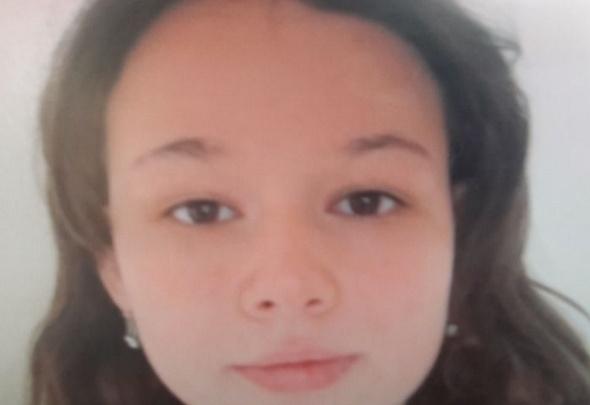 В Новосибирске разыскивают пропавших в конце января школьниц
