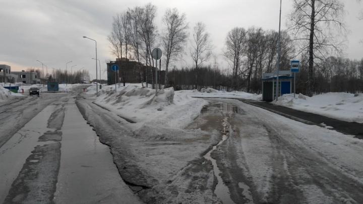 Там темно и страшно: власти отказались продлевать автобусный маршрут до посёлка умных новосибирцев