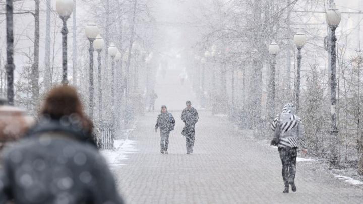 Тепла не будет: на Свердловскую область надвигаются снегопады