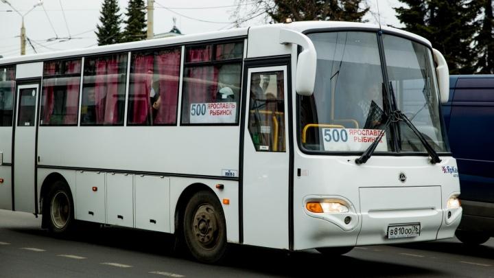 Власти отдали популярный маршрут Ярославль — Рыбинск своим. И по нему пустили неудобные автобусы