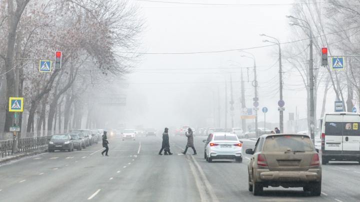 Городские власти планируют на 5 дней перекрыть улицу Авроры