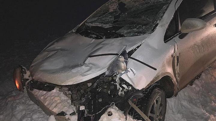 На трассе в Башкирии Opel Corsa въехал в лося, без жертв не обошлось