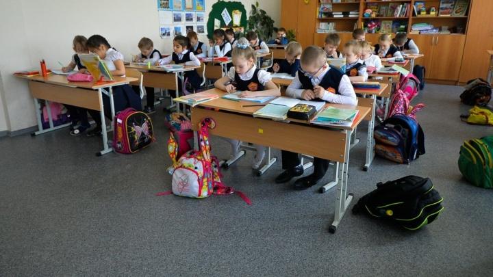 Жалуйтесь: в Екатеринбурге открыли горячую линию для сообщений о школьных поборах