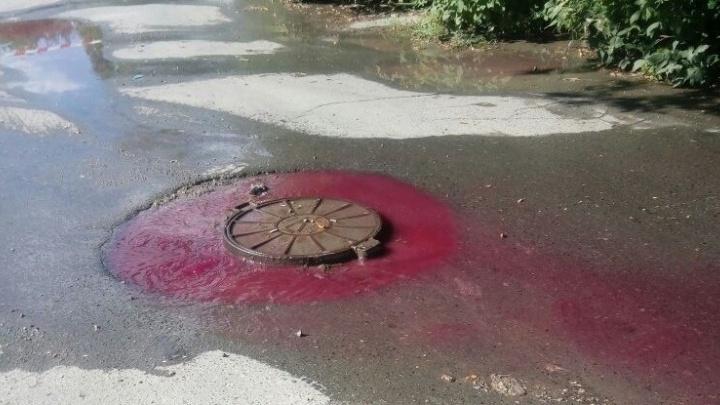 Гламурная канализация: на дублере Сибирского тракта днем текла розовая река