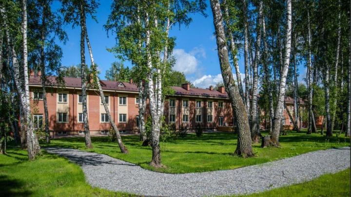Под Академгородком продается жилье 275 квадратов на 2,5 га с баней и бассейном за 10,3 млн рублей
