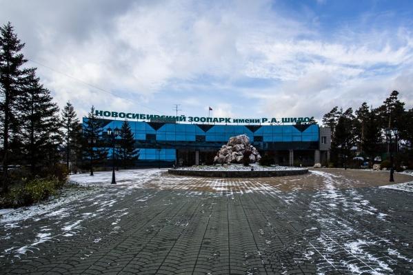 Теперь новосибирцы смогут дольше караулить новорожденных белых медвежат