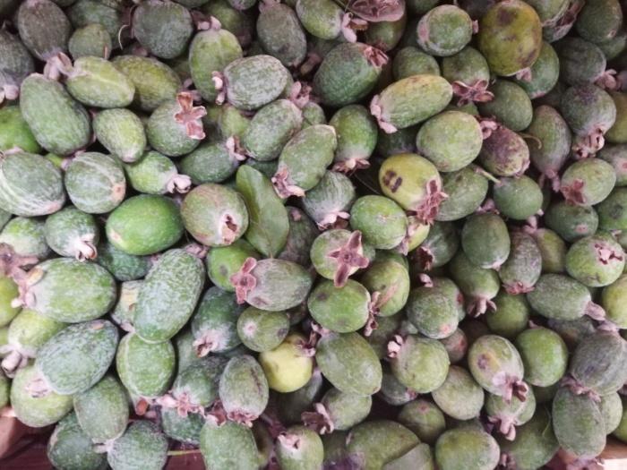 По вкусу плоды фейхоа напоминают смесь клубники с киви