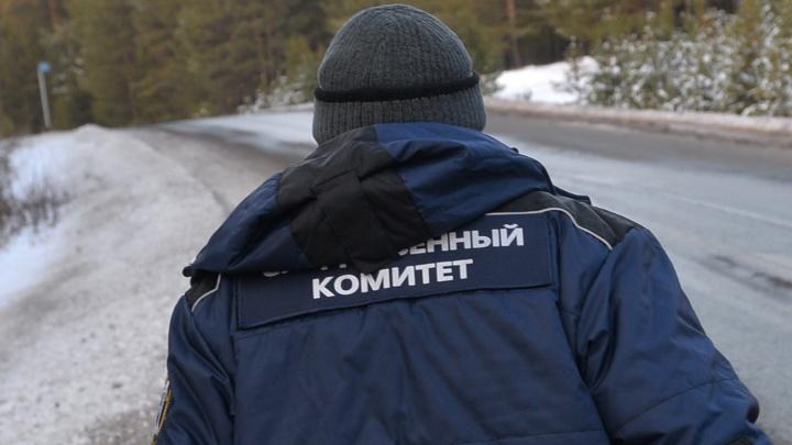 Провалился под неокрепший лед: следователи проверят семью ребенка, утонувшего в уральском пруду