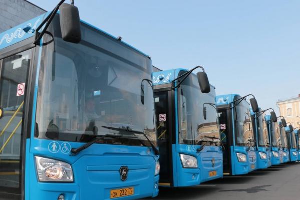 Автобусы приедут в Архангельск уже в понедельник