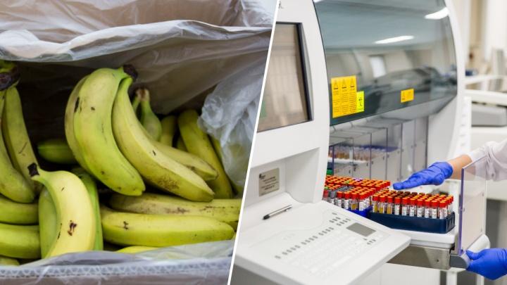 Новосибирцы пересылают друг другу сообщения об опасных бананах и китайском вирусе — правда или фейк?