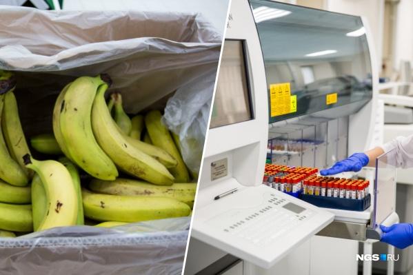 До Новосибирска дошла фейковая рассылка про опасные бананы