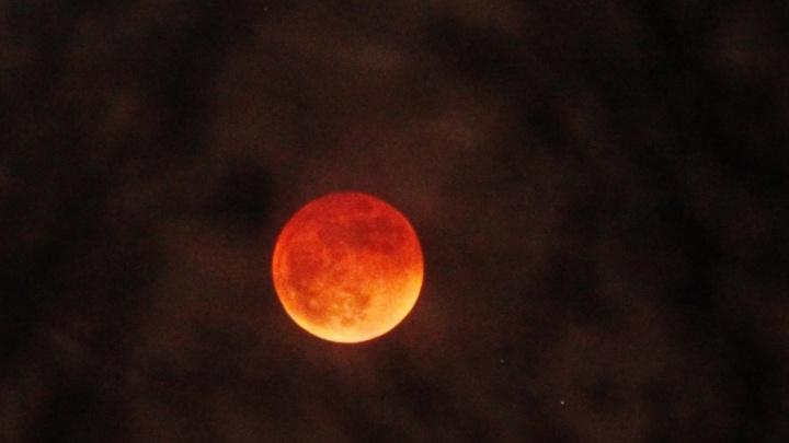 Самое длительное за последние 100 лет лунное затмение тюменцы увидят без телескопа и бинокля