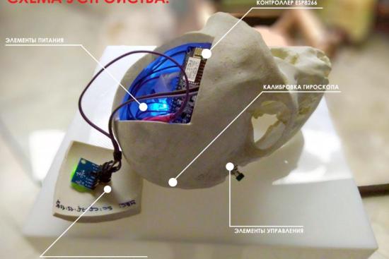Воссозданный череп обезьяны в музее посетителям можно крутить в руках, и на мониторе модель тоже будет крутиться и показывать информацию о частях черепа.