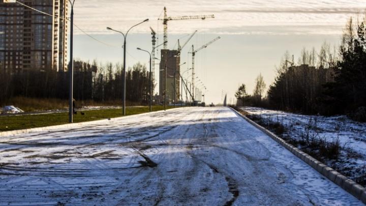 Городские власти решили забрать 100 гектаров для продолжения Красного проспекта