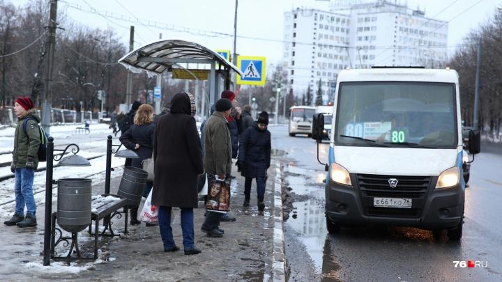 «Мы ждали его на остановке»: в Ярославле потерялся 10-летний мальчик