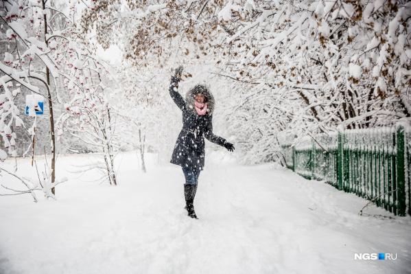 В области и городе будут идти небольшие снегопады