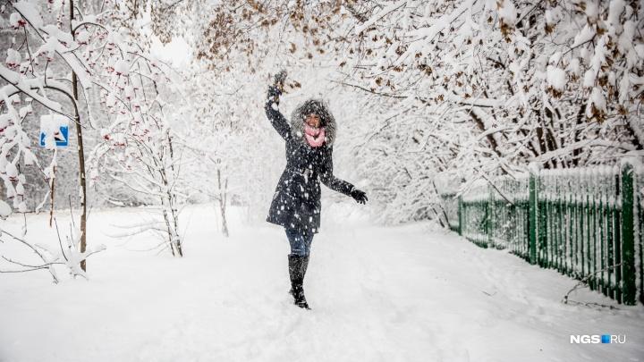 Новосибирские синоптики рассказали о погоде на ближайшие дни: нас ждут гололедица и туманы