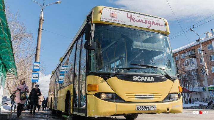 Два автобусных маршрута в Перми начнут ездить по новому расписанию