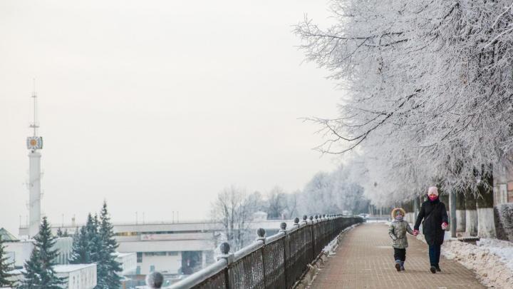 Ярославль погрузился в зимний туман: смотрим сказочные фото