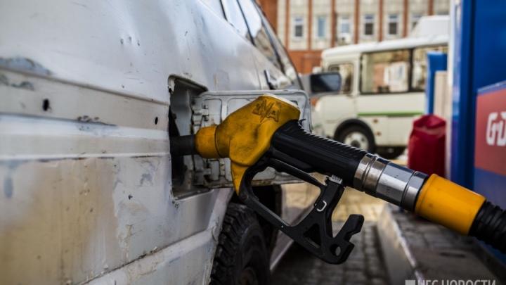 Внезапно: в Новосибирске перестал дорожать бензин