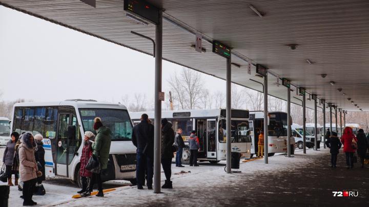 Выбирайте свой маршрут: когда тюменский автовокзал начнет продавать билеты на новогодние праздники
