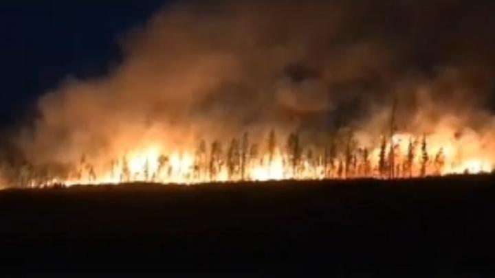 Смотрим, как горят красноярские леса: дым от пожаров укрыл всю Сибирь