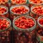 Земляничка пошла: семь мест, где в окрестностях Тюмени насобирать лукошко лесных ягод