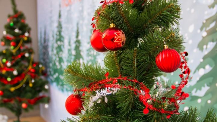 «Ёлка не должна упираться в потолок»: самарцам рассказали, как безопасно отметить Новый год