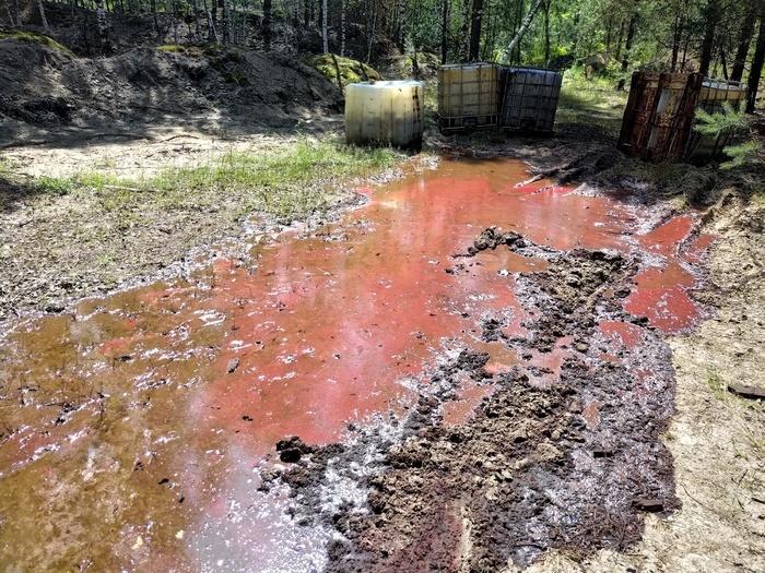 Разлив химикатов в лесу.
