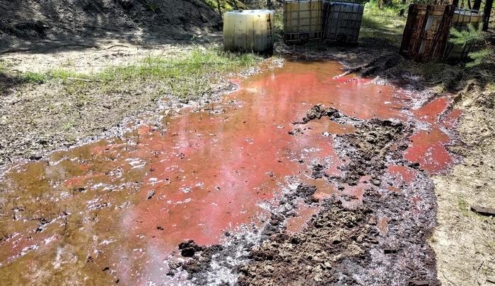 В Дзержинске исследуют место разлива химотходов после публикации в СМИ