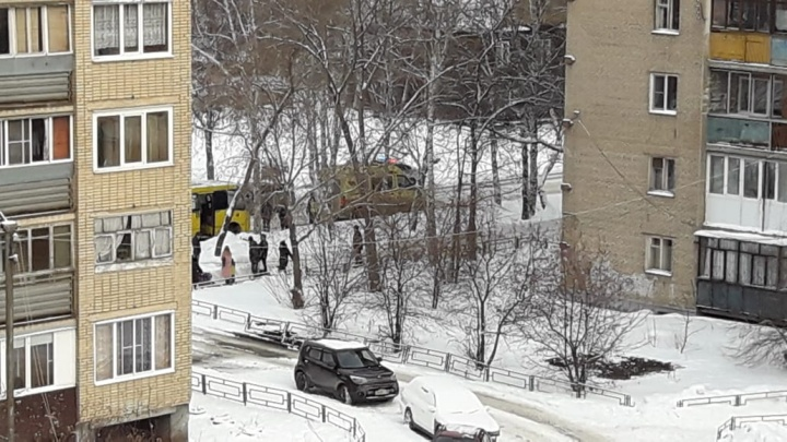 В Екатеринбурге водитель маршрутки сбил 82-летнюю бабушку