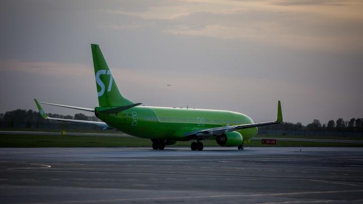 S7 вошла в тройку лучших авиакомпаний Восточной Европы