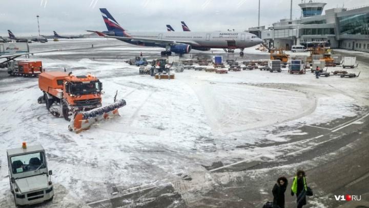 «Аэрофлот» отменил авиарейсы между Волгоградом и Москвой