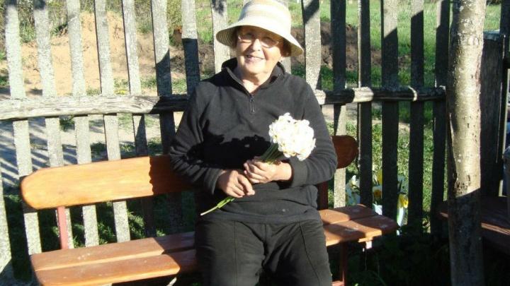 Дедушка «проспал» бабушку: в Рыбинске дачница ушла за черникой и не вернулась
