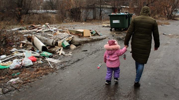 Мусор и стаи диких собак захватили Северный городок Волгограда