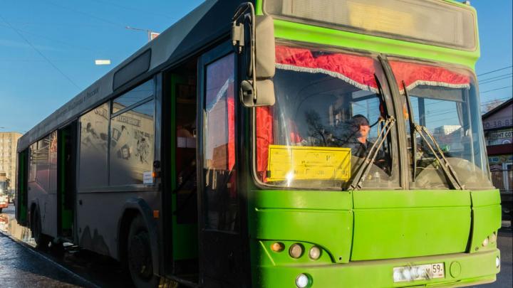 Реально ли наказать перевозчика за автобус, который не приехал? Житель Закамска доказал, что можно