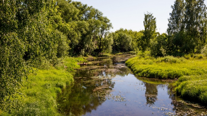 Загрязняли реку: в Ярославской области «Водоканал» незаконно сбрасывал сточные воды в Которосль