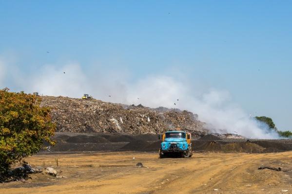 Несмотря на конфликт «Экологии-Новосибирск» с некоторыми перевозчиками, мусор новосибирцев всё равно вывозить будут