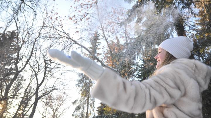 В начале недели в Екатеринбург придет тепло