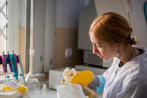 Инфекционисты заверили, что вовремя начали лечение всех новосибирцев с менингококковой инфекцией. О болезни говорили не только внешние яркие признаки, но и результаты специфических обследований