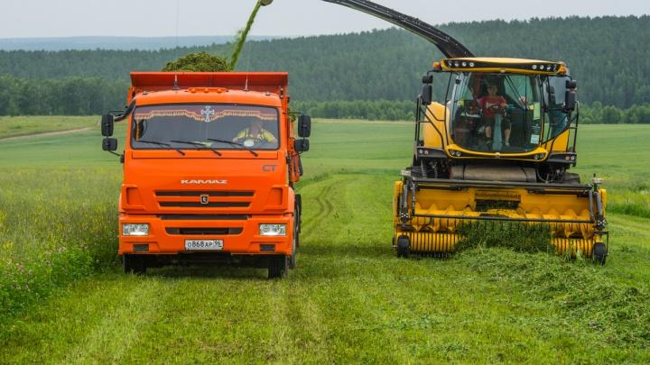 Деревенский тест-драйв: гоняем по полю накомбайне, который стоит как Ferrari