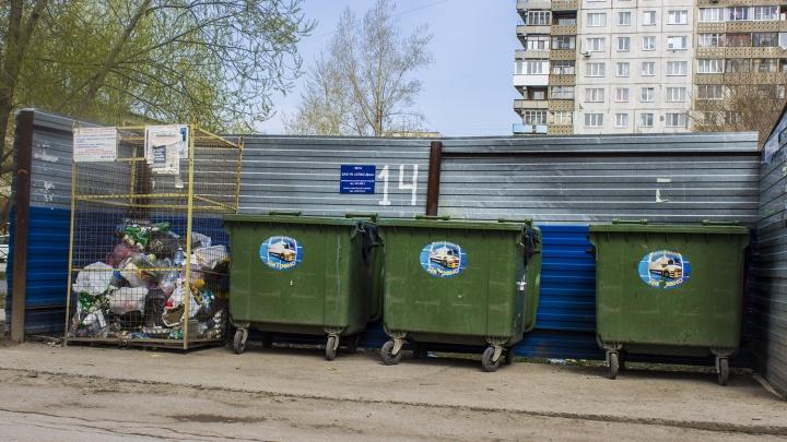 Новосибирский микрорайон начал зарабатывать деньги на раздельном сборе мусора