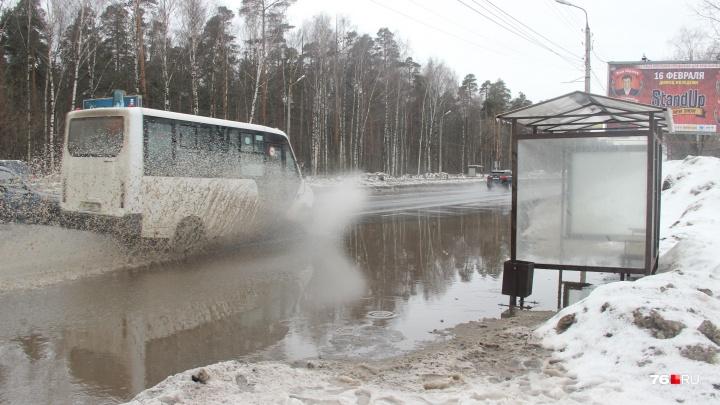 В Ярославле разлилась 20-метровая лужа. Но власти её не заметили