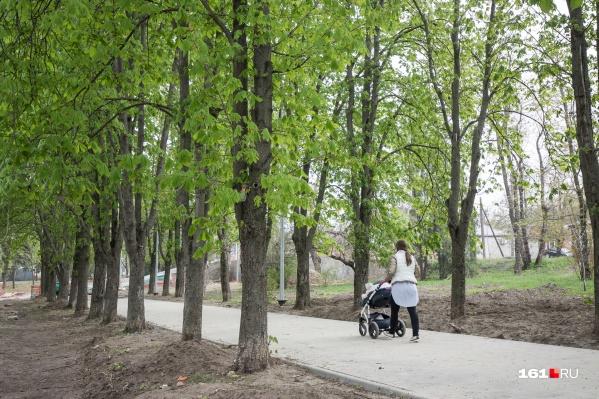 Будущий лесопарковый пояс вокруг Ростова хотят защитить законодательно
