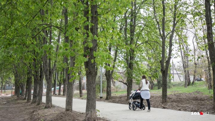 Вокруг Ростова создадут лесопарковый зеленый пояс
